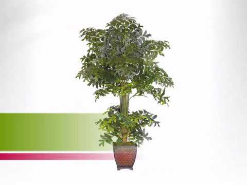 9 Foot Fishtail Palm: Unpotted - Artificialplantsandtrees.com