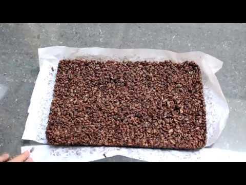 Cara Membuat Rice Krispies Treat Coklat