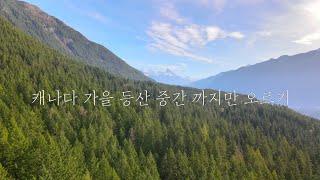 캐나다 가을 등산 칠리왁 엘크 마운틴 V…