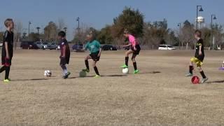 soccerskills4kids.com -- Skill Mastery Training Sessions