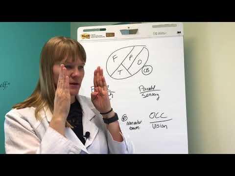 Brain Anatomy and Functions | Nucleus Healthиз YouTube · Длительность: 2 мин6 с