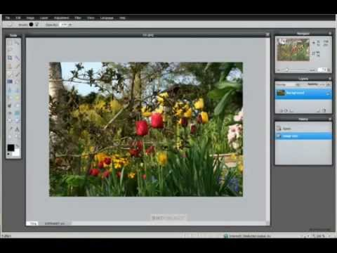 Pixlr Photo and Image Editor - Tutorial & Training - 1 hr 21 min - 32 chpt