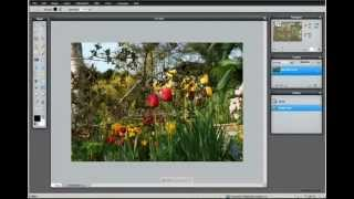 pixlr photo and image editor tutorial training 1 hr 21 min 32 chpt