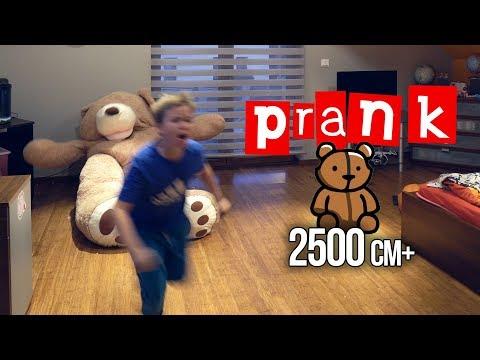 HALLOWEEN PRANK! ogromny miś 2500mm+