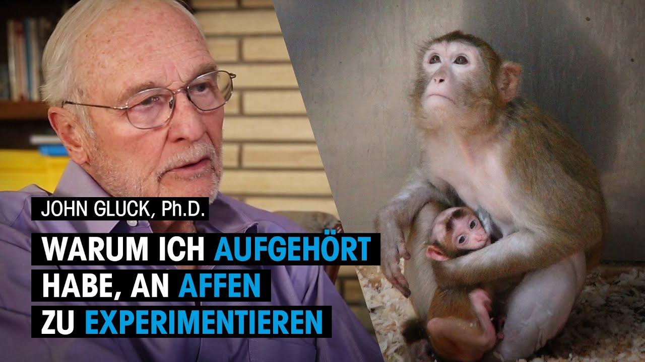 Darum experimentiert John Gluck, Ph.D. nicht mehr an Affen