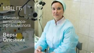 МВЦ ГБ - Московский ветеринарный центр глазных болезней Веры Олейник
