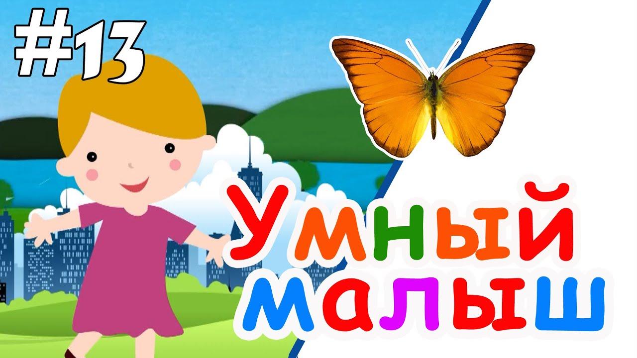 Умный малыш #13. Развивающий мультфильм для малышей / Smart baby #13. Наше_всё!