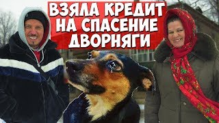 Пенсионерка взяла кредит 20.000 на лечение уличного пса. Банки.