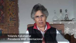 Amazonía Ecuador: la Iniciativa Yasuni ITT - Yolanda Kakabadse - Video 15 © TRAFFIC