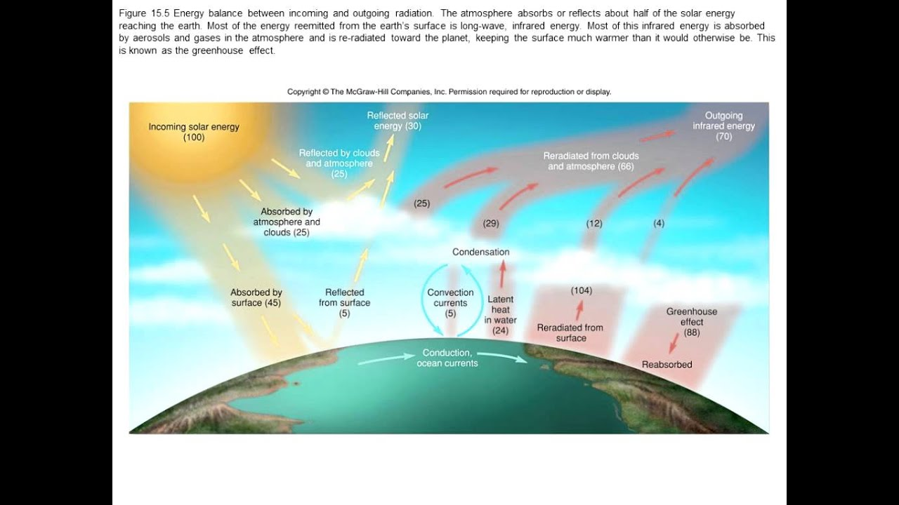 linton bowie biology 102 environmental conservation air weather