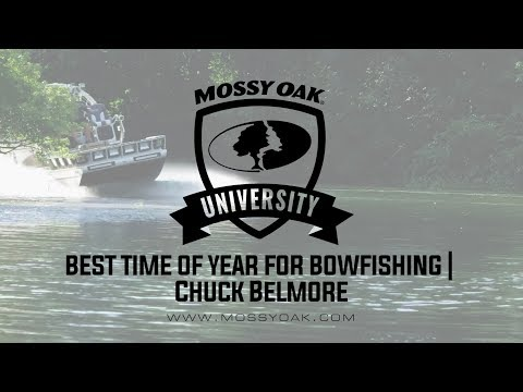 Best Time Of Year For Bowfishing • Chuck Belmore