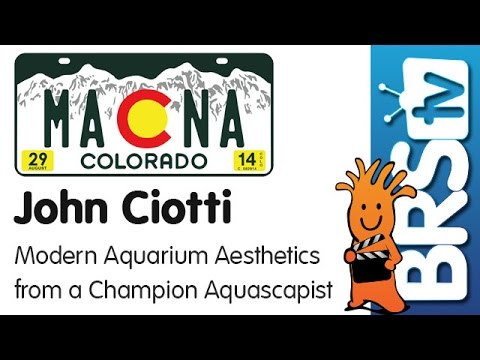 Modern aquarium aesthetics from a champion aquascapist by John Ciotti | MACNA 2014