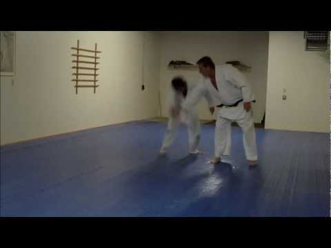Aikido High Fall Slo Motion
