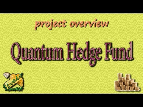 Quantum Hedge Fund / Overview Of The Company
