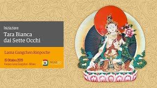 Seven Eyes White Tara Empowerment – Iniziazione di Tara Bianca dai Sette Occhi (ita-ing) – 15/10/2019