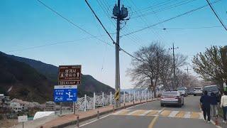 화개장터~쌍계사 벚꽃길 2020.3.28(토)