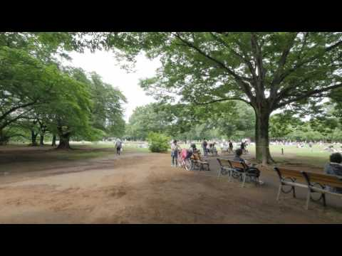 Videowalk in Yoyogi park