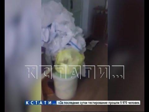 Нарушение или норма — видео, снятое в Кстовской ЦРБ, привело к внутренней проверке