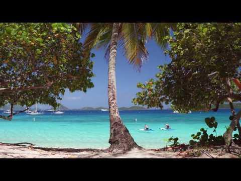 St john, sights and sounds of Honeymoon Beach in stunning 4K!