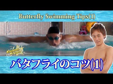 水泳バタフライで速く泳ぐために簡単な方法