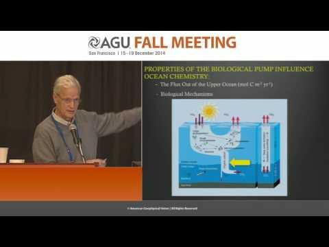 Evaluating the Ocean's Biological Carbon Pump
