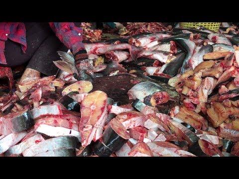 Cambodian Fish Paste - Fermenting Condiment