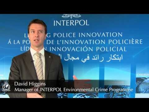 David Higgins, Manager of INTERPOL Environmental Crime Programme