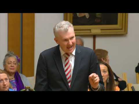 The Government Doesn't Believe In Modern Multicultural Australia - TONY BURKE