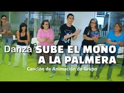 danza-sube-el-mono-a-la-palmera-|-canción-de-campamento-|-dinámica-de-grupo-|-animación