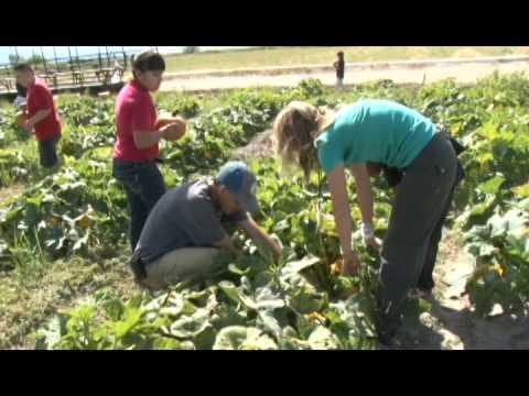 Black Island Farms Syracuse UT