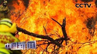 [中国新闻] 澳大利亚林火持续燃烧 已致27人死亡 政府再次发出撤离通知   CCTV中文国际