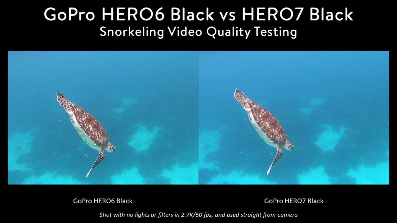 GoPro Hero 7 Underwater Camera Review - Underwater