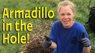Watch Me Pull an Armadillo Out of This Hole!