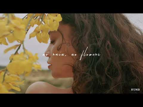 Sabrina Claudio - Numb (Official Audio)