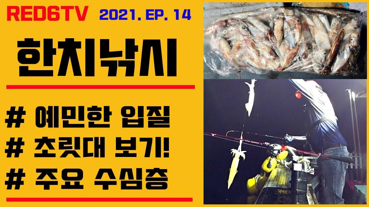 한치낚시 - 예민한 입질 초릿대 보기! (한치이카메탈)_2편
