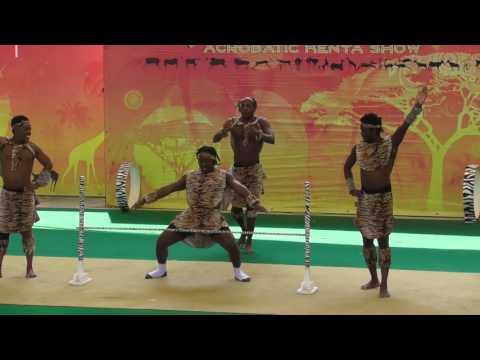Africa Acrobatic Show Dusit Zoo