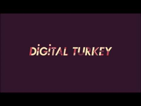 DIGITAL TURKEY SHAPING