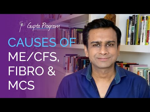 Causes of MECFS, Fibromyalgia & MCS with Ashok Gupta