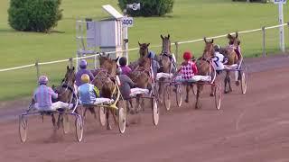 Vidéo de la course PMU PRIX JIMINE DU MARAIS