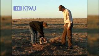 black footed ferrets reintroduction program ktwu s sunflower journeys