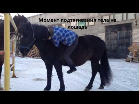 Вопрос: Как ездить на лошади без седла?