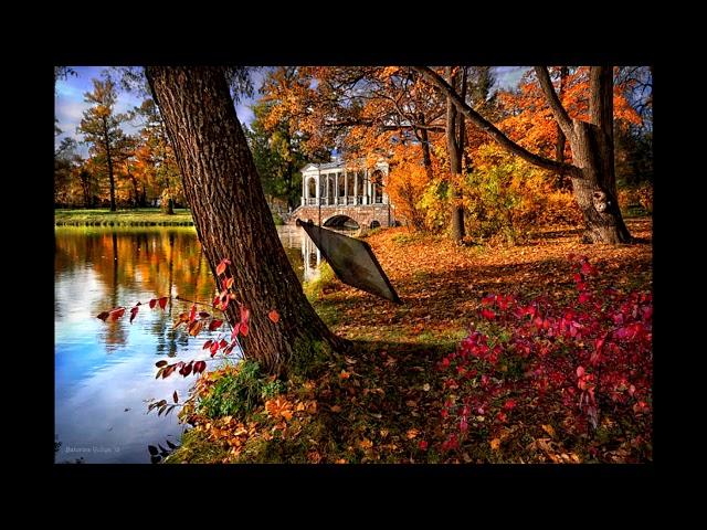 Изображение предпросмотра прочтения – ИванСавченко читает произведение «Осенней позднею порою.....» Ф.И.Тютчева