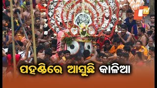 Rath Yatra 2019 Live From Puri | Lord Jagannath Comes Out Of Srimandir For Annual Sojourn