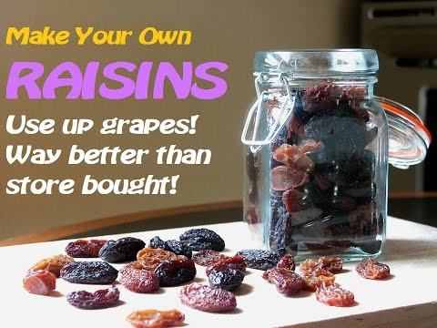 Make Your Own RAISINS~No dehydrator~TRY it!!