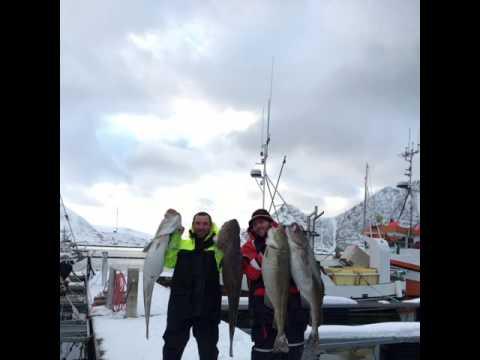Loppa Fishing Mafia