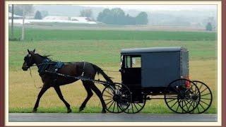 Amish Village Review Amish Bus Tour Lancaster PA