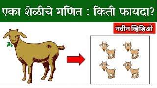एका शेळीचे गणित: किती फायदा?  | Goat Commerce | Commercial Goat Farming 🔥🔥
