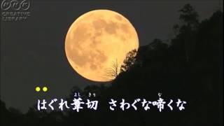 「大利根ながれ月」カラオケ・オリジナル歌手・氷川きよし