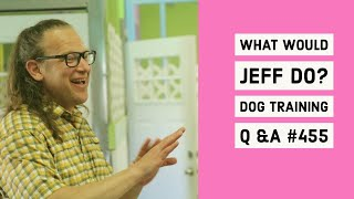 What Would Jeff Do? Dog Training Q & A #455