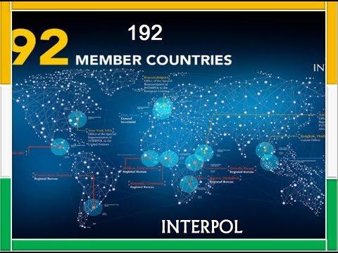 International Criminal Police Organization | Interpol